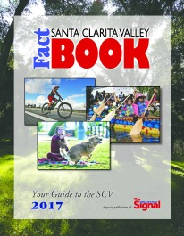 SCV_FactBook2017_Cover